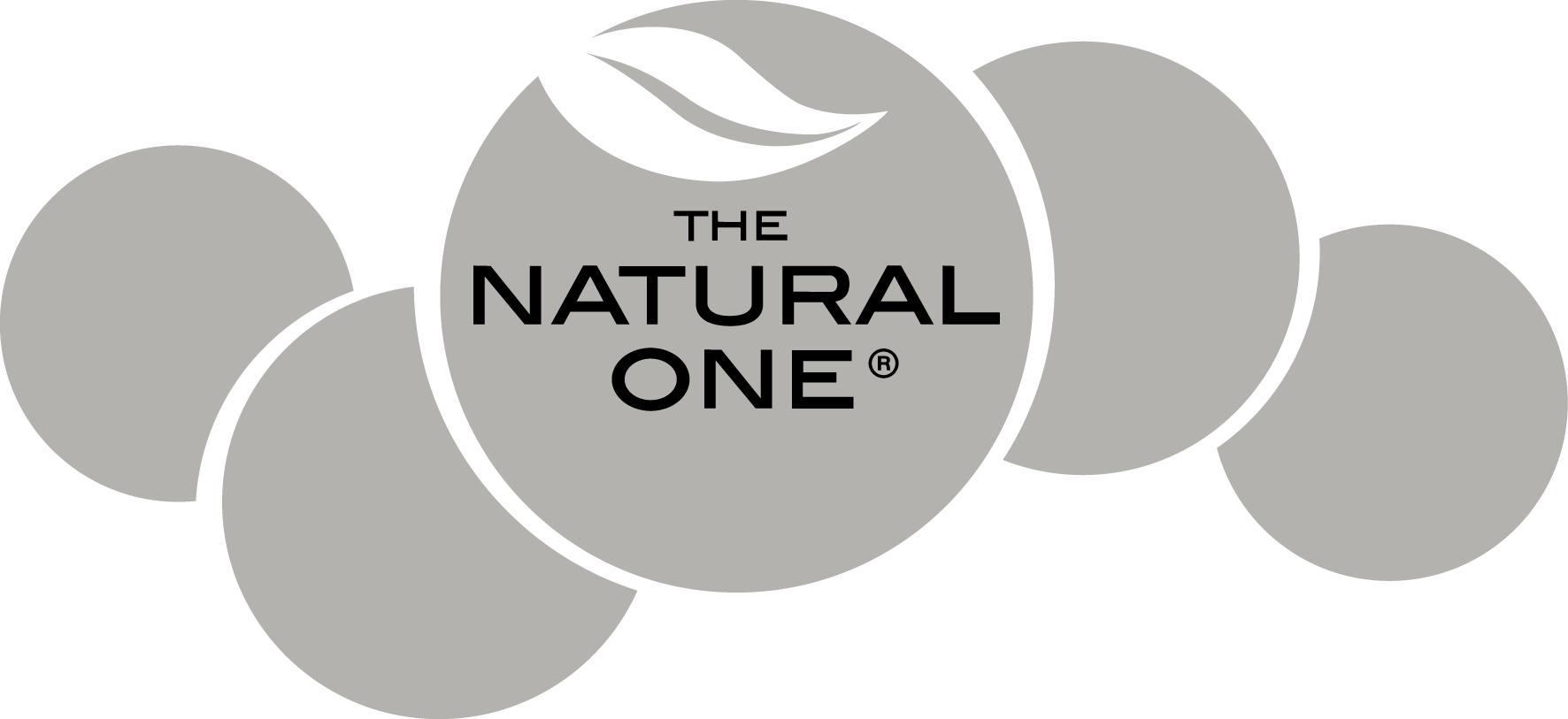 logo The Natural One